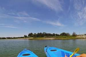 Kayaking in upper cape cod