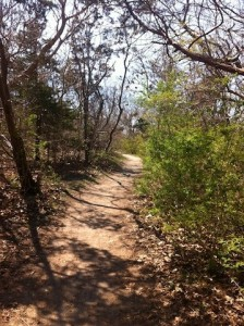 The Knobs Trail