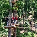 Picture of one of the heritage adventure park tree stands