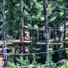 Picture of one of the heritage adventure park tree bridges