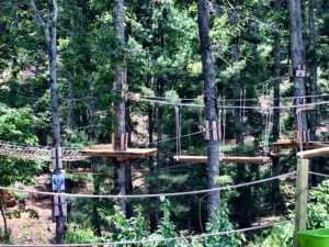 Picture of one of the heritage adventure park tree bridges