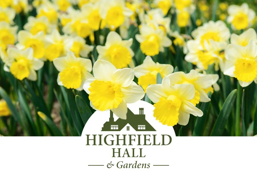 Highfield Hall and Gardens Spring 2019